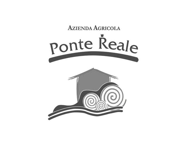 PonteReal